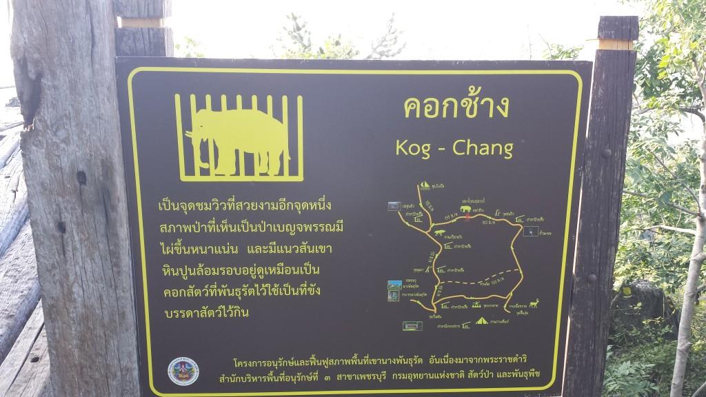 Er der nogen, der kan oversætte dette? Vi vil gerne vide, hvad der er med den elefant.