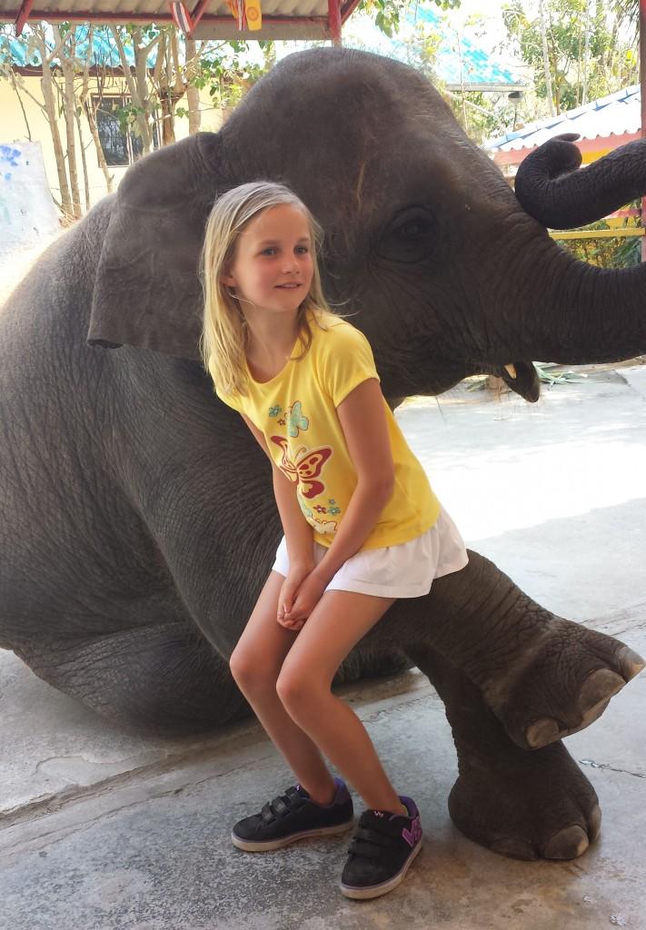 Handberg elefant Madeleine2 (beskåret)