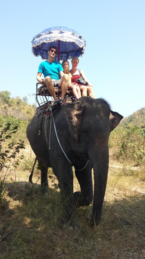 Handberg elefant8