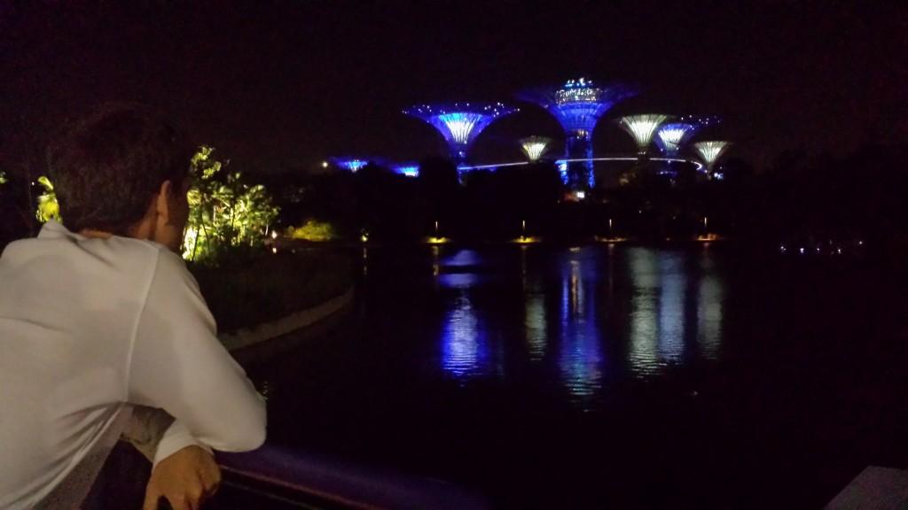 Singapore træer nat Thomas