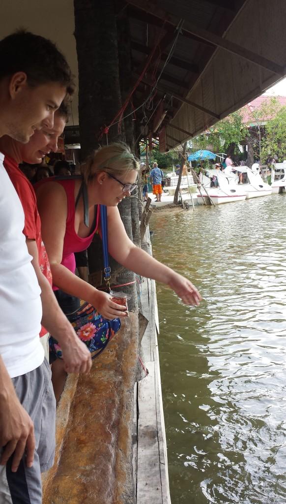 Floating market Tora, Jens og Thomas fodrer fisk (beskåret)