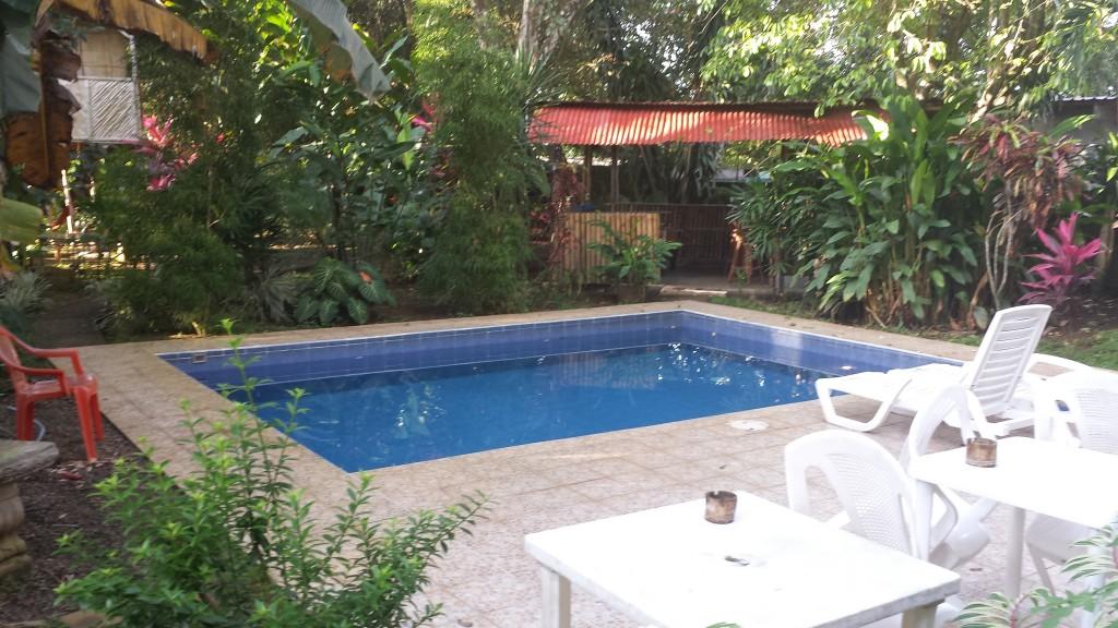 Bambu Hostel pool