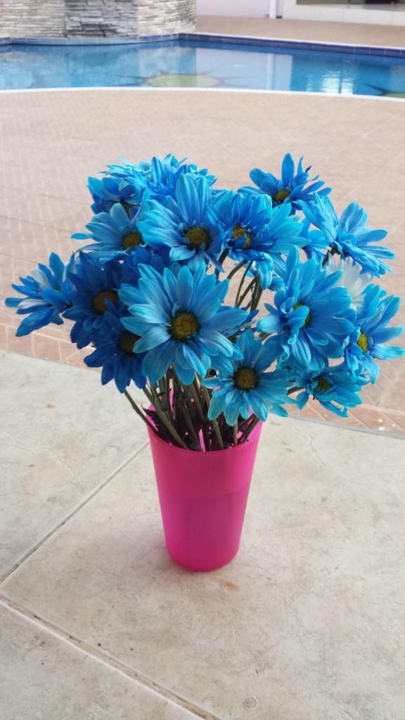 Blaa blomster
