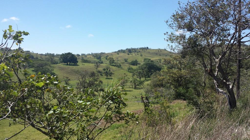 Koeretur Cerro Punta3