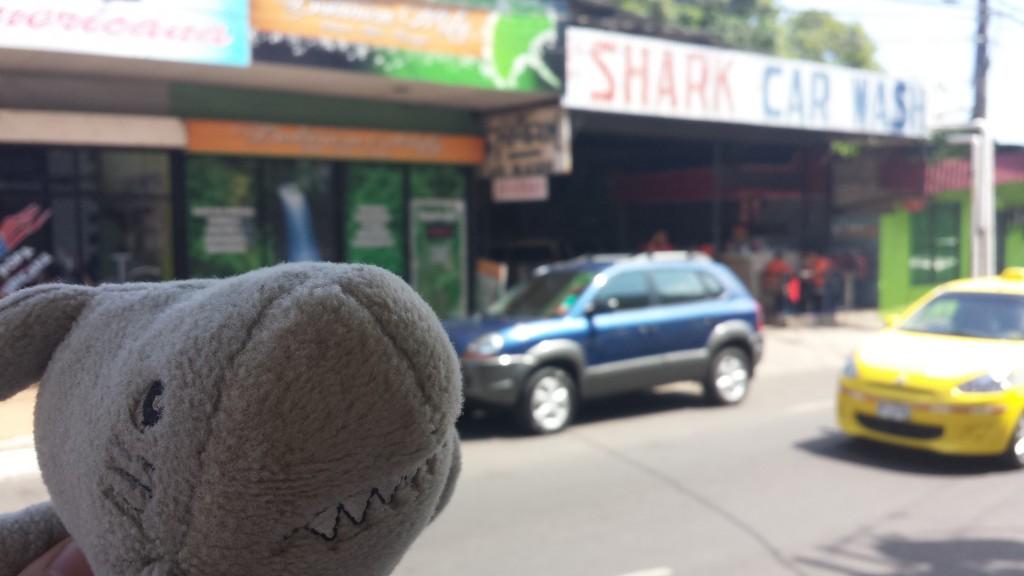 Shark Car Wash Haj7