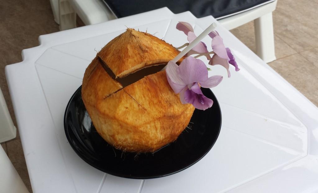 Kokosnød (klippet)