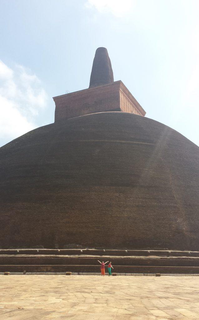 Brun stupa Anne og Tora3 (klippet)