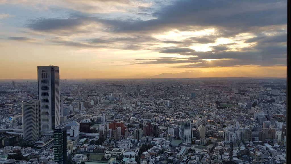 tokyo-metropolitan-government-building-udsigt2